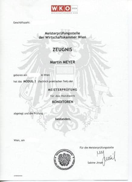 20100527_ZeugnisModul1