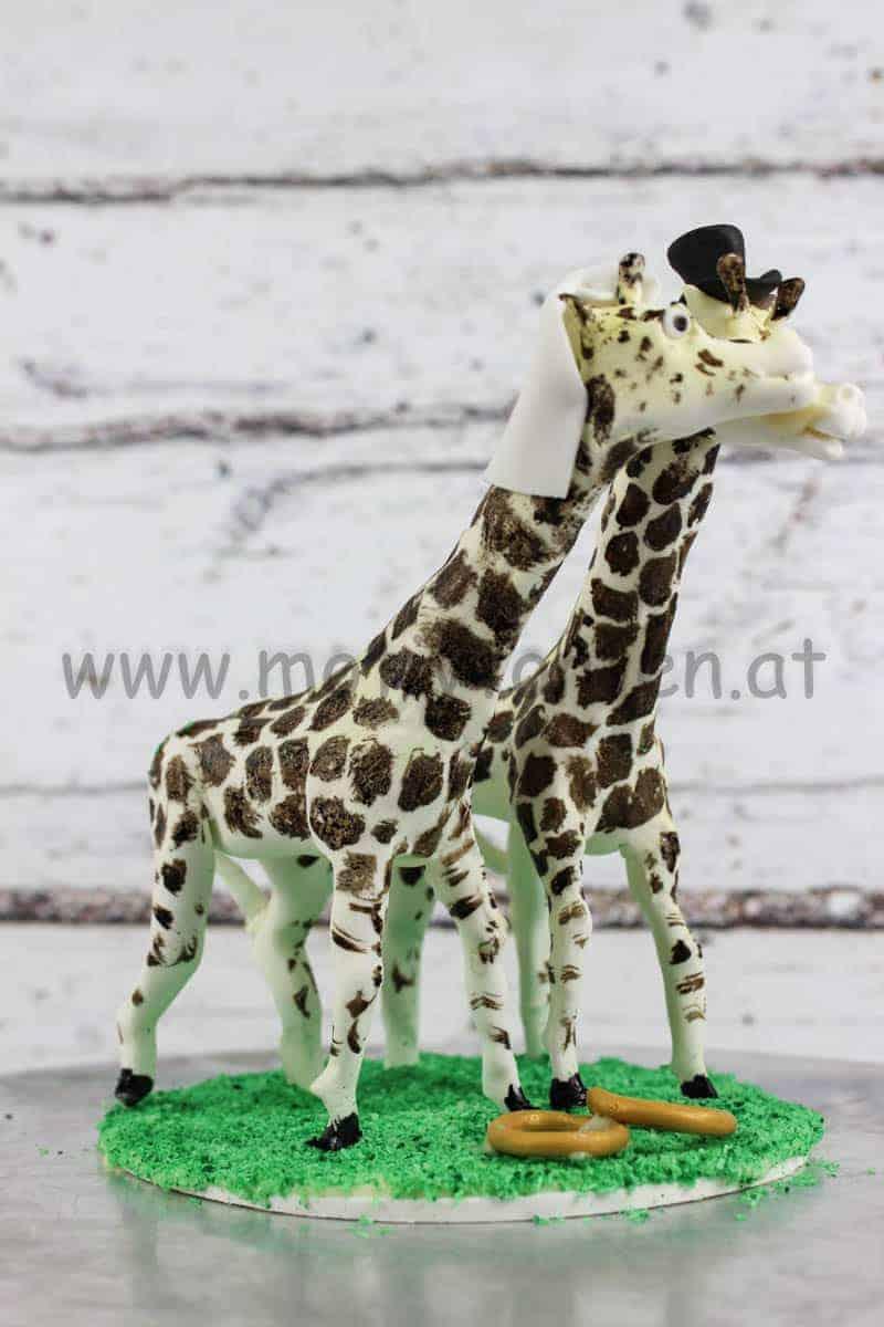 brautpaar-giraffen-20180116